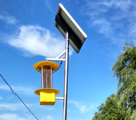 太阳能杀虫灯诱杀杨树林虫害的效益