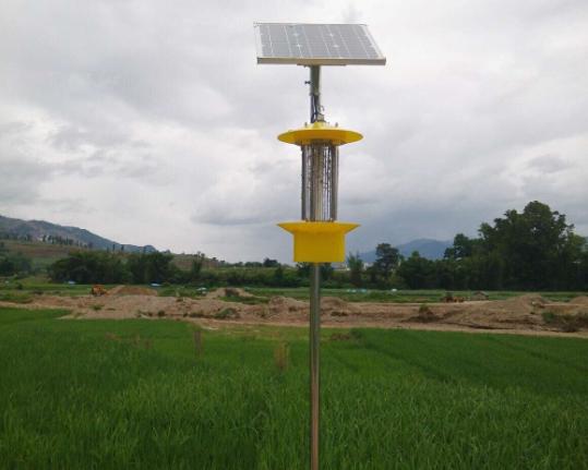 <b>云飞太阳能杀虫灯用于农田除虫管理</b>