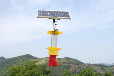 太阳能杀虫灯的价格
