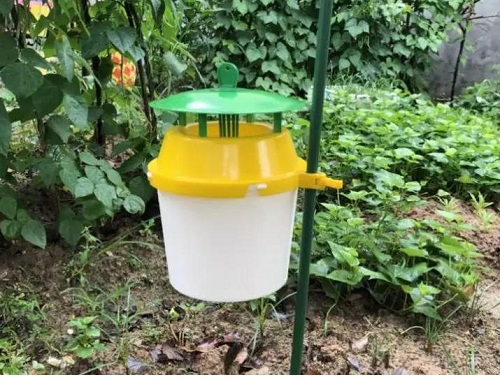 桶型诱捕器