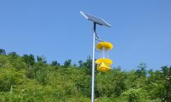 太阳能杀虫灯诱杀害虫的显著效果