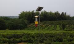 太阳能杀虫灯顺应现代农业发展