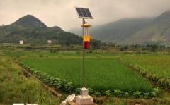 太阳能杀虫灯对苹梢鹰夜蛾的捕杀观测