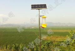 太阳能杀虫灯有助于建设绿色花生品牌