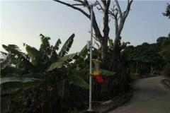 云飞自动清虫太阳能杀虫灯推动闽清县橄榄产业