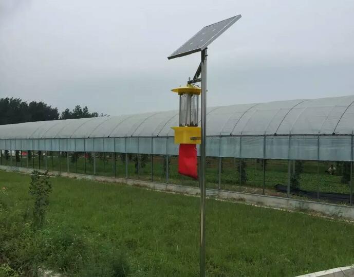 杀虫灯在蔬菜虫害防治中效果显著