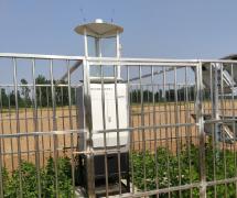 易县农业农村局引进云飞物联网智能虫情测报灯